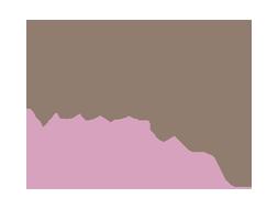 lisse design logo